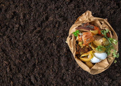 From food waste to smart compost formulations