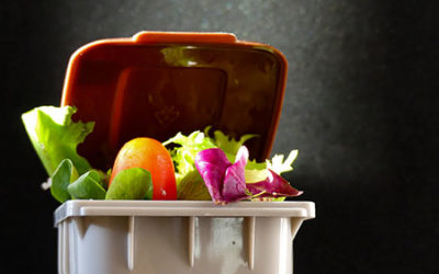Diverting food waste from landfill is gold for local councils and residents