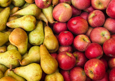 Options for utilising apple and pear pulp residue