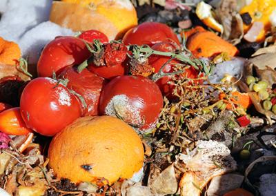 Advancing regional agri-food waste valorisation