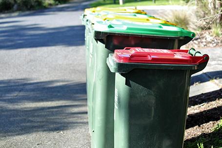 Burnside bins to lead in understanding food waste